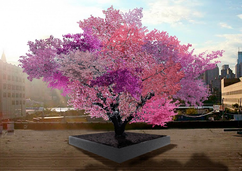 This Incredible Tree Can Grow 40 Kinds Of Fruit