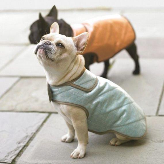 Martha Stewart Dog Bed Tutorial