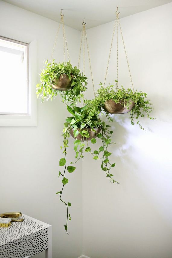 unique diy hanging planters
