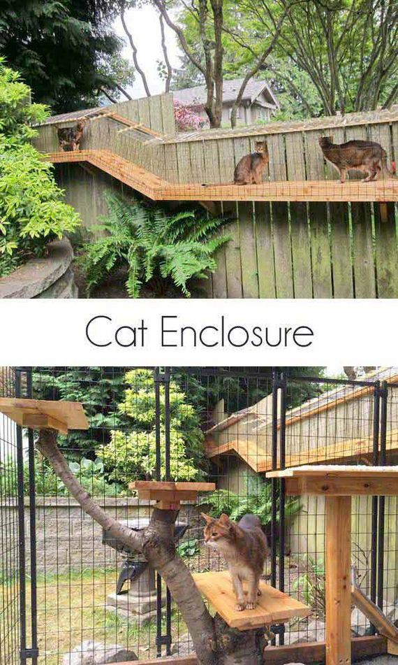 03-Projects-and-Tips-for-Pets-WooHome