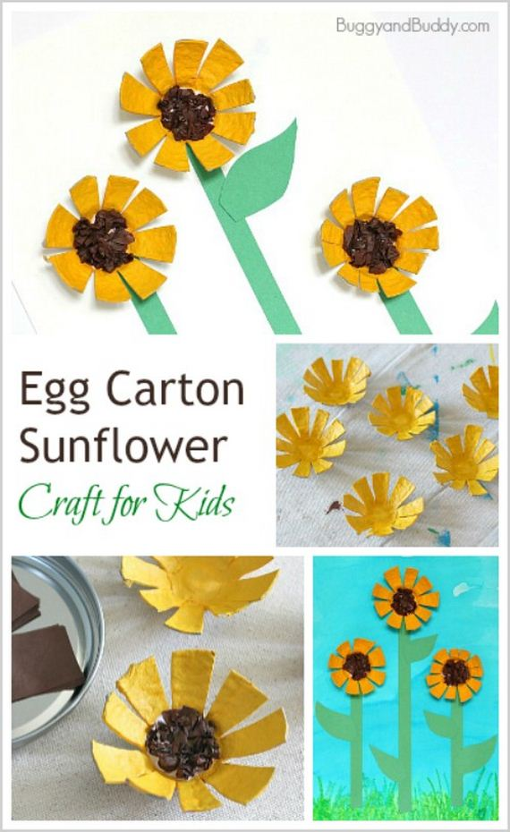 11-Egg-Cartons