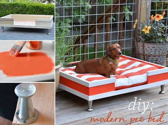 11-Projects-and-Tips-for-Pets-WooHome