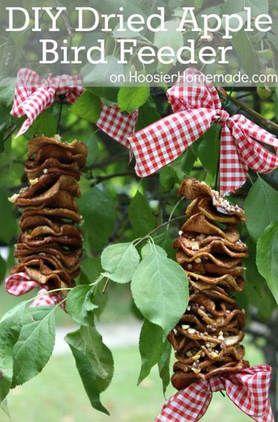 13-Bird-Feeder-Ideas