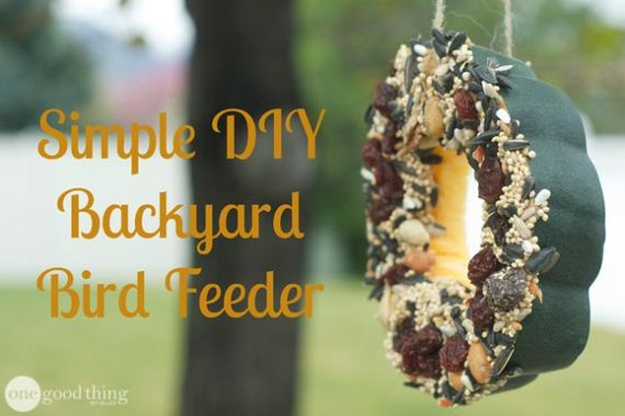 15-Bird-Feeder-Ideas