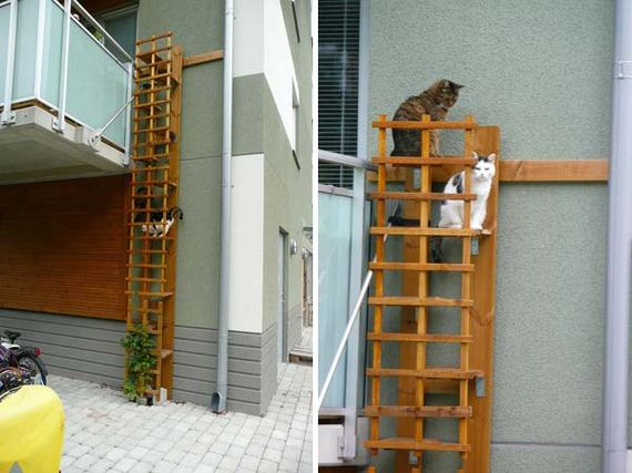 17-Projects-and-Tips-for-Pets-WooHome