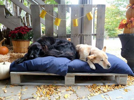 21-Projects-and-Tips-for-Pets-WooHome