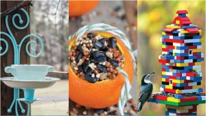 Bird-Feeder-Ideas0
