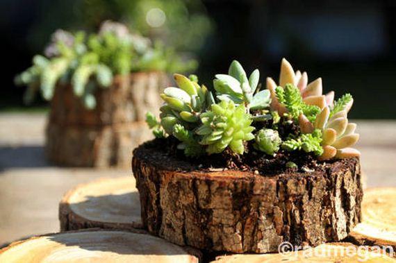 03-DIY-Tree-Stump-Garden