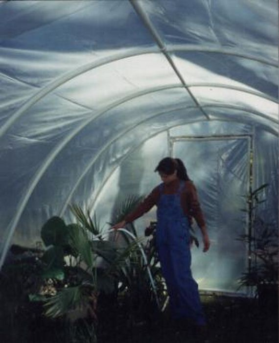05-Great-DIY-Greenhouse-Projects