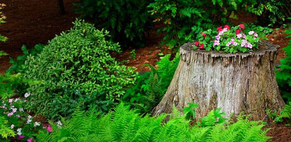 10-DIY-Tree-Stump-Garden