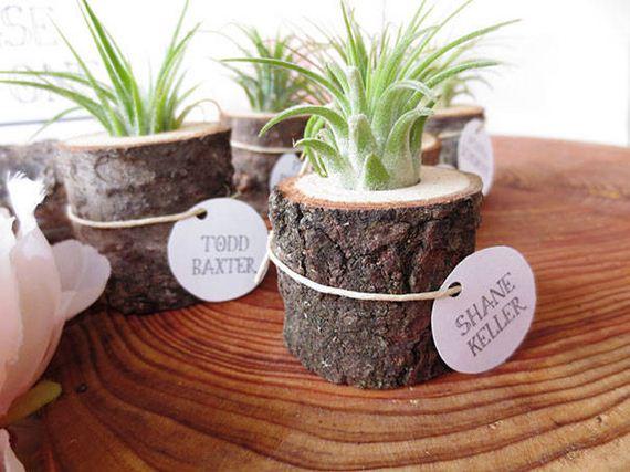 11-DIY-Tree-Stump-Garden