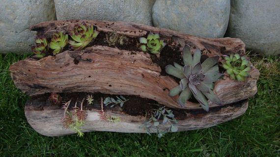 12-DIY-Tree-Stump-Garden