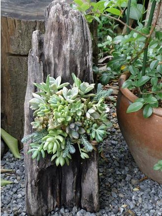 How To Recycle Tree Stumps For Garden Art And Yard Decorations