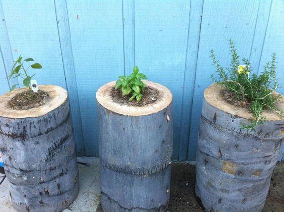14-DIY-Tree-Stump-Garden