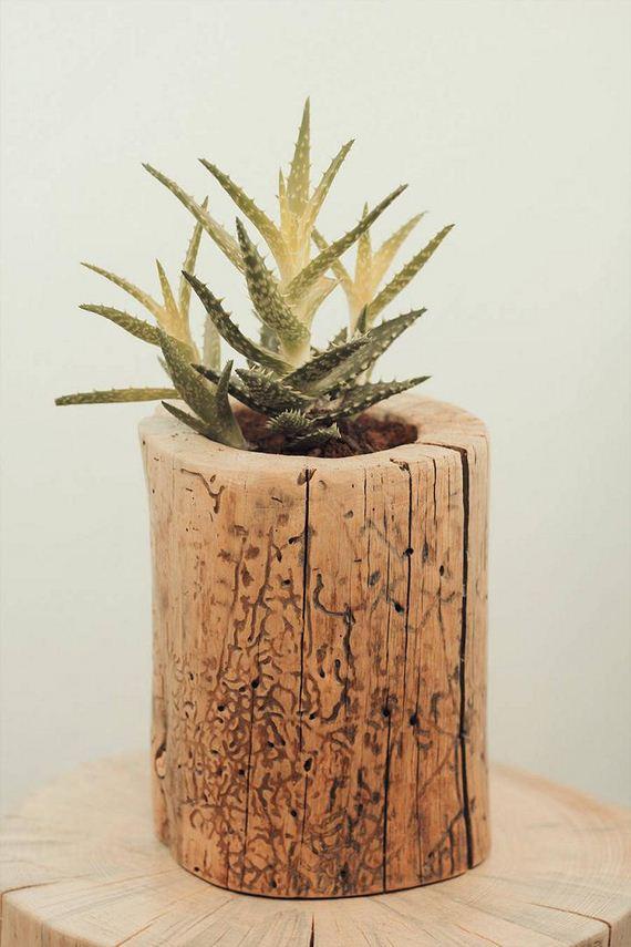 15-DIY-Tree-Stump-Garden