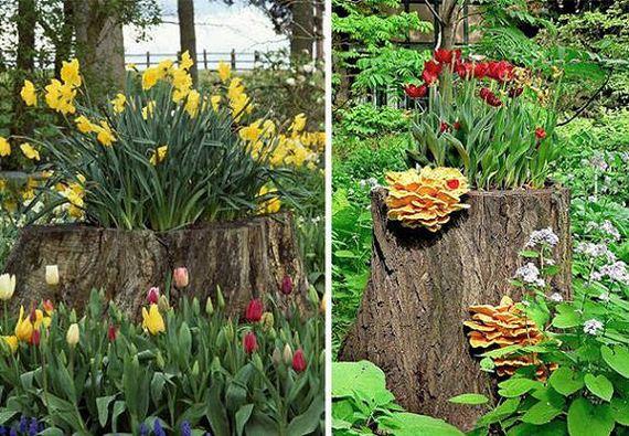 17-DIY-Tree-Stump-Garden