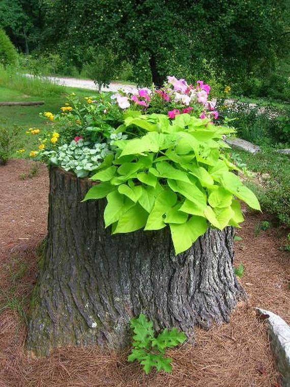 How to recycle tree stumps for garden art and yard decorations - Tree stump decorating ideas ...