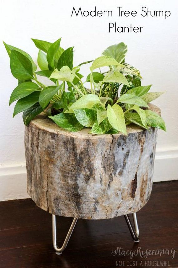 19-DIY-Tree-Stump-Garden