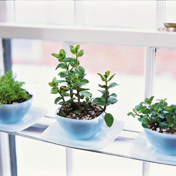 Diy indoor herb garden ideas - Indoor herb garden containers ...