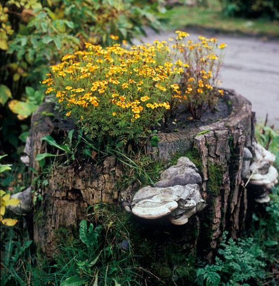 25-DIY-Tree-Stump-Garden