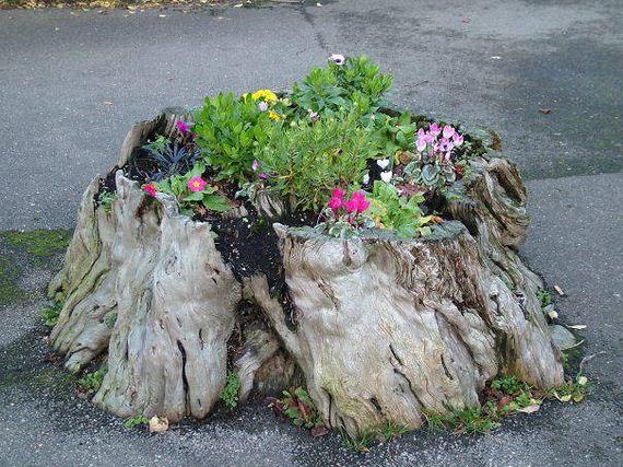 28-DIY-Tree-Stump-Garden