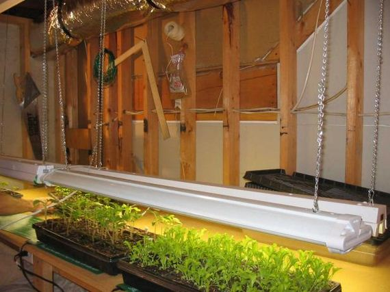 28-Great-DIY-Greenhouse-Projects