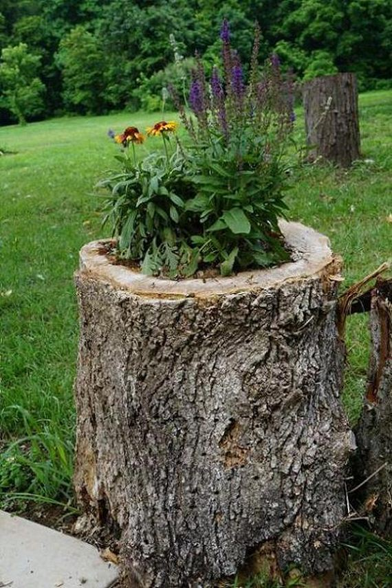 31-DIY-Tree-Stump-Garden
