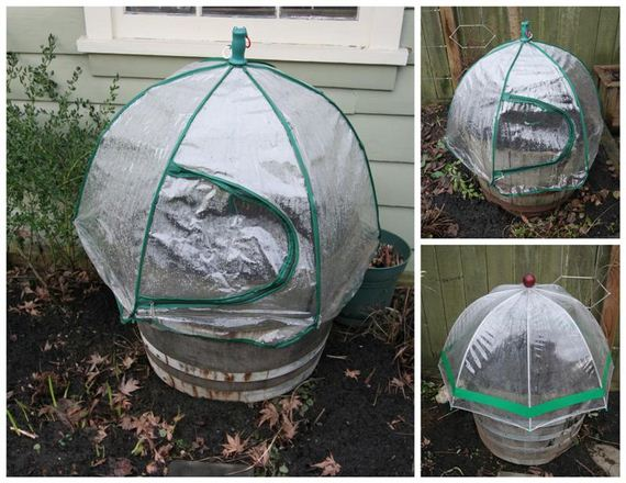 31-Great-DIY-Greenhouse-Projects