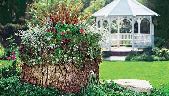 32-DIY-Tree-Stump-Garden