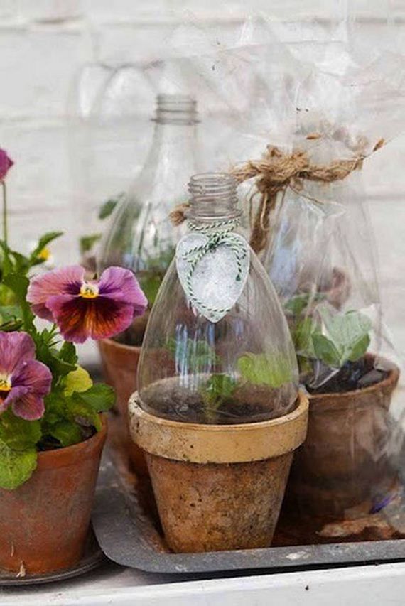 32-Great-DIY-Greenhouse-Projects