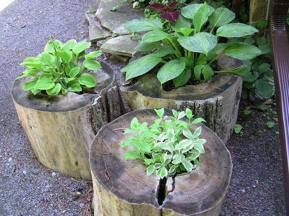 35-DIY-Tree-Stump-Garden