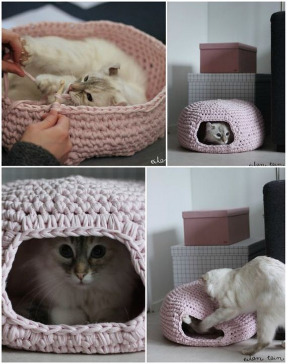 08-Projects-Cat-Owners