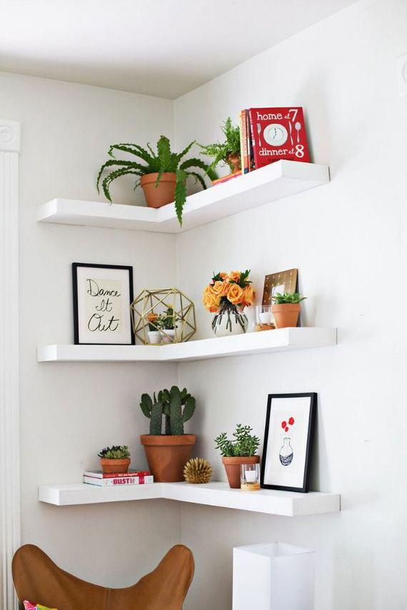 27-Own-Shelves