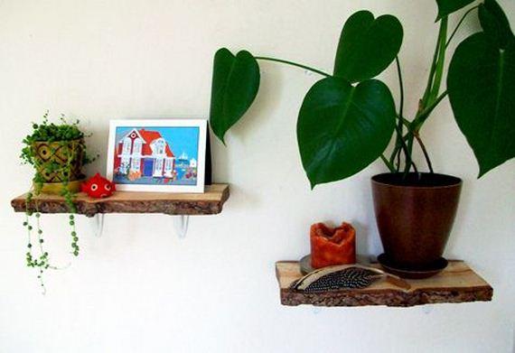 49-Own-Shelves