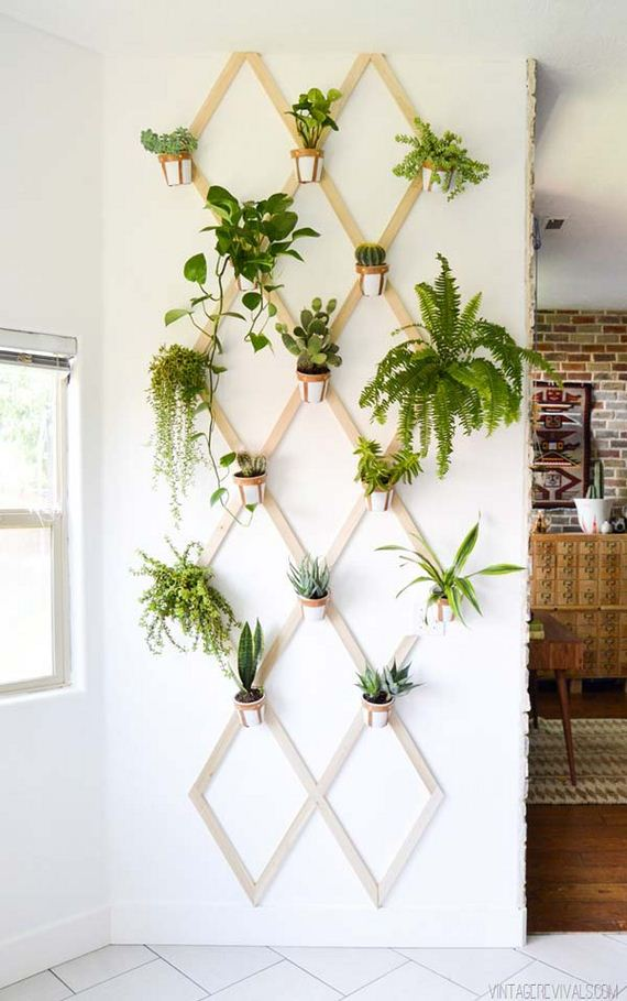 01-indoor-garden-projects