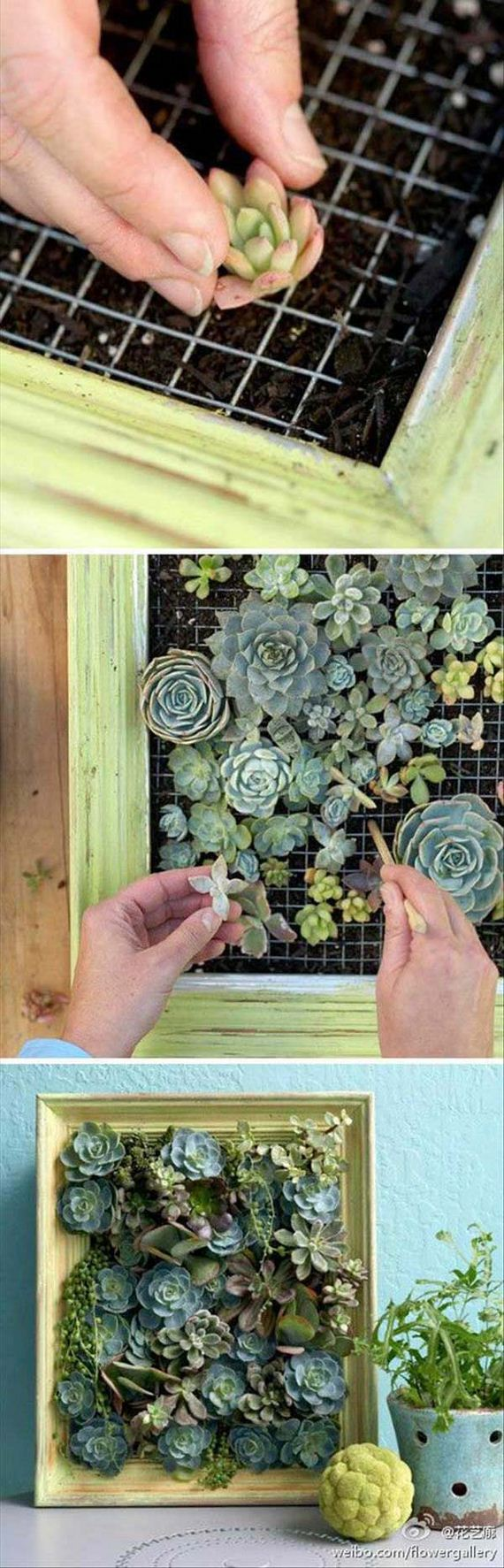 05-indoor-garden-projects