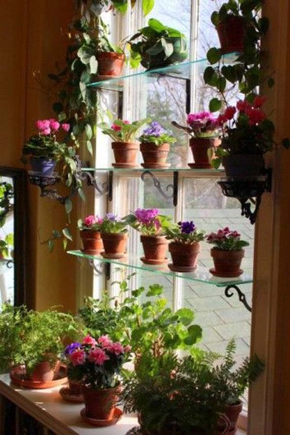 13-indoor-garden-projects