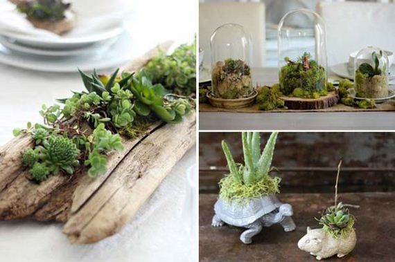 21-indoor-garden-projects