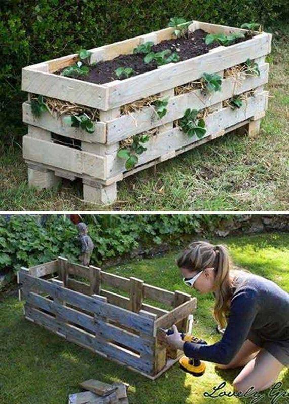 01-Gardening-Tricks