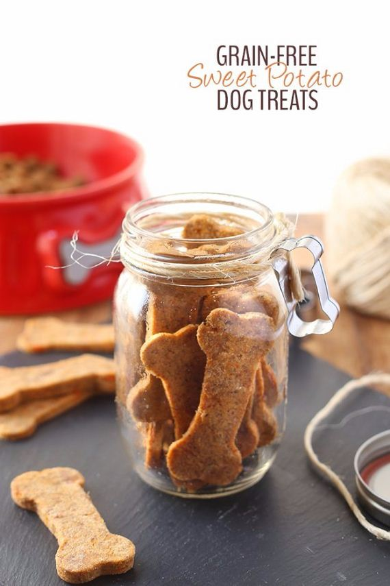 01-Homemade-Pet-Recipes