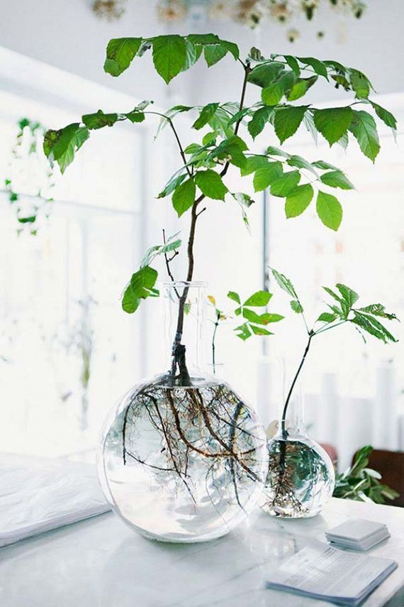 02-indoor-garden-projects
