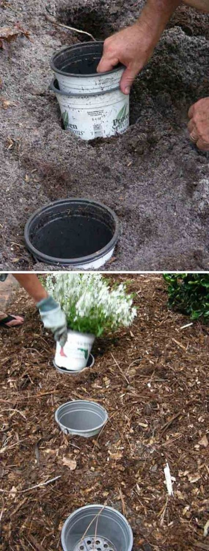 04-Gardening-Tricks