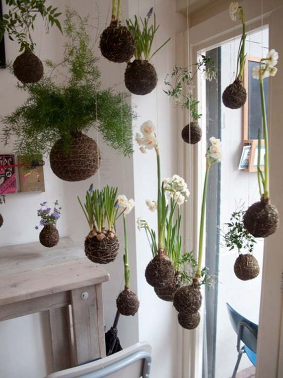 04-indoor-garden-projects