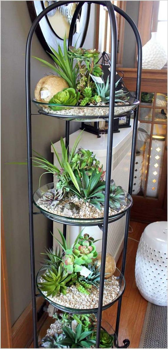 07-indoor-garden-projects