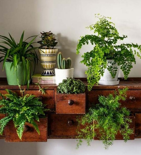 08-indoor-garden-projects
