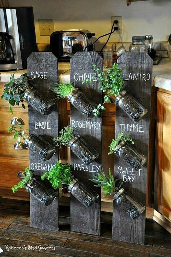 09-indoor-garden-projects