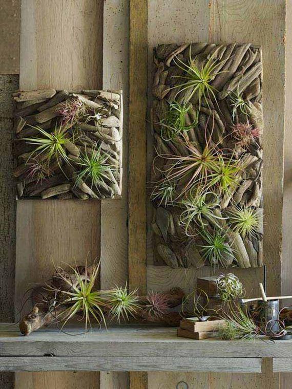 10-driftwood-home-decor-woohom