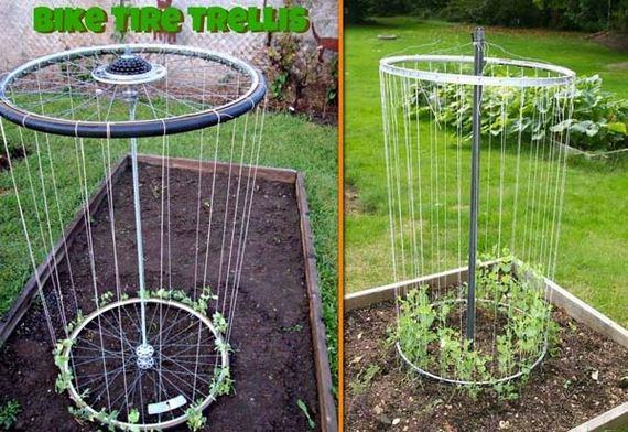 11-Gardening-Tricks