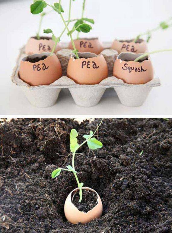 15-Gardening-Tricks