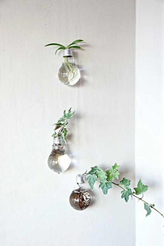 15-indoor-garden-projects